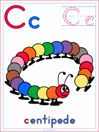 Centipede Preschool Activities and Crafts