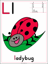 Alphabet Letter L Ladybug Preschool Lesson Plan Printable Activities and Worksheets