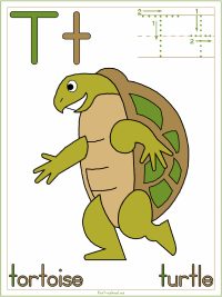 Alphabet Letter T Tortoise Turtle Preschool Lesson Plan Printable Activities and Worksheets