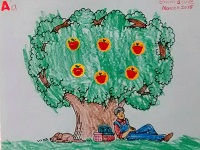 apple trees and johnny appleseed coloring crafty project