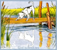 Aesop's Fable: The Dog and Its Reflection